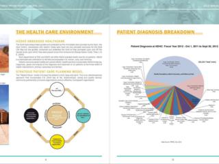 Tséhootsooí Medical Center - Annual Report Asset Spread
